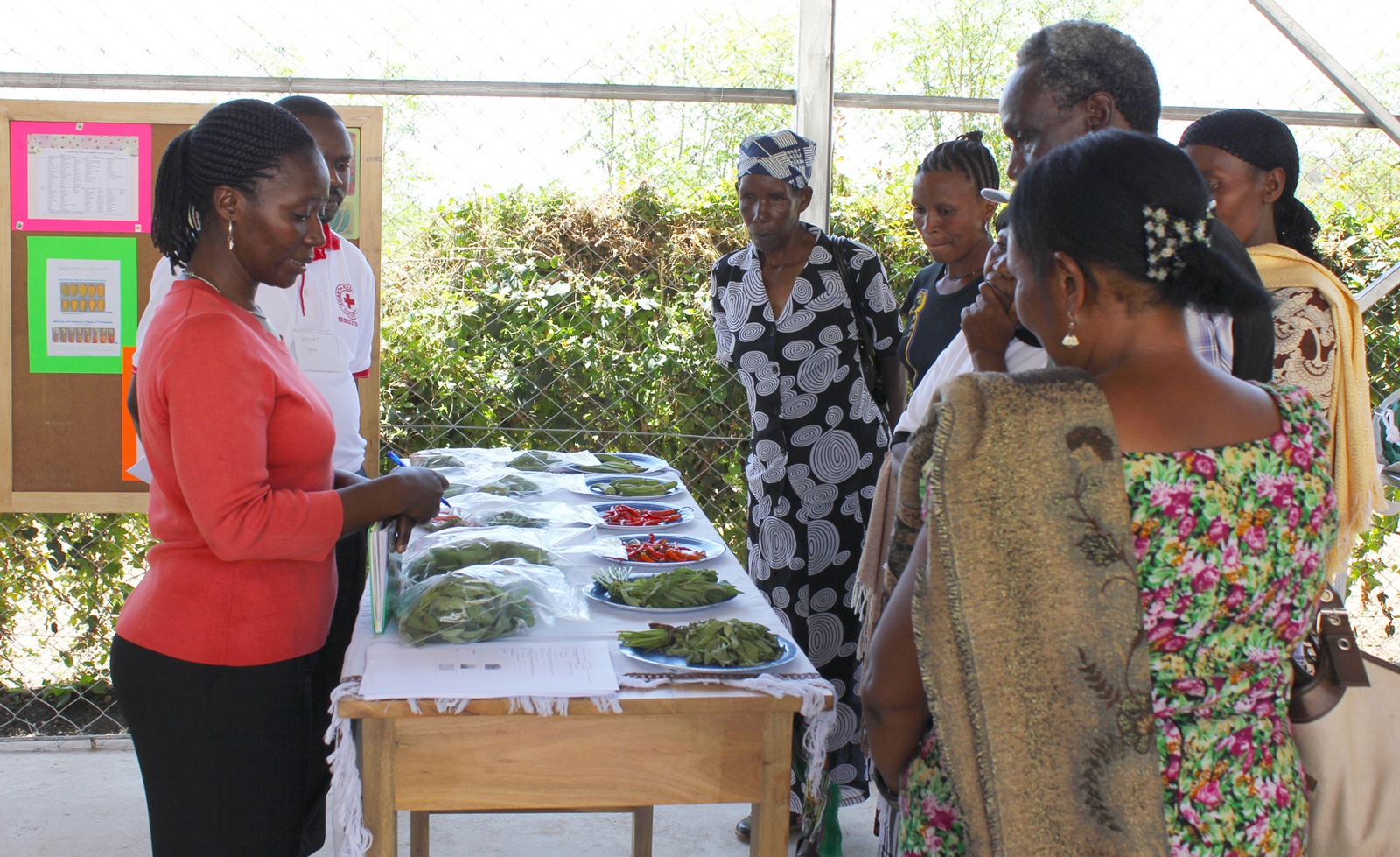 Woman leads a discussion over a table of vegetables on plates and in bags with a group of farmers who are listening