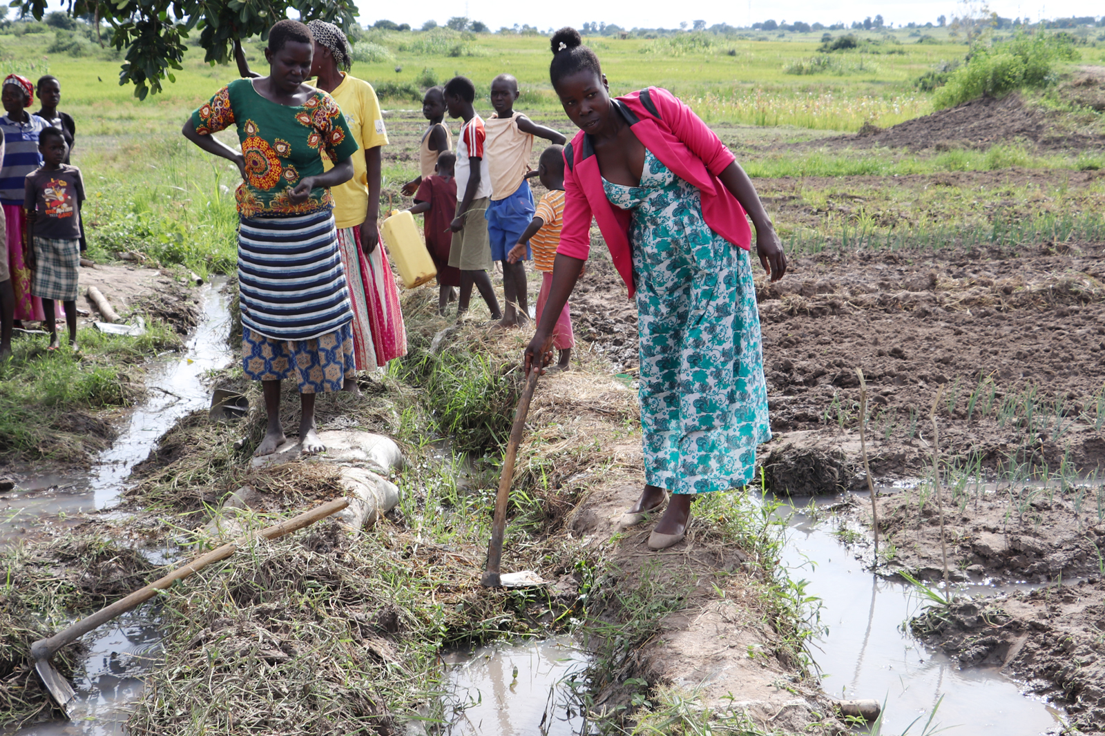 Women farmers standing on the edges of canals in farming field, one holding a hoe to divert water