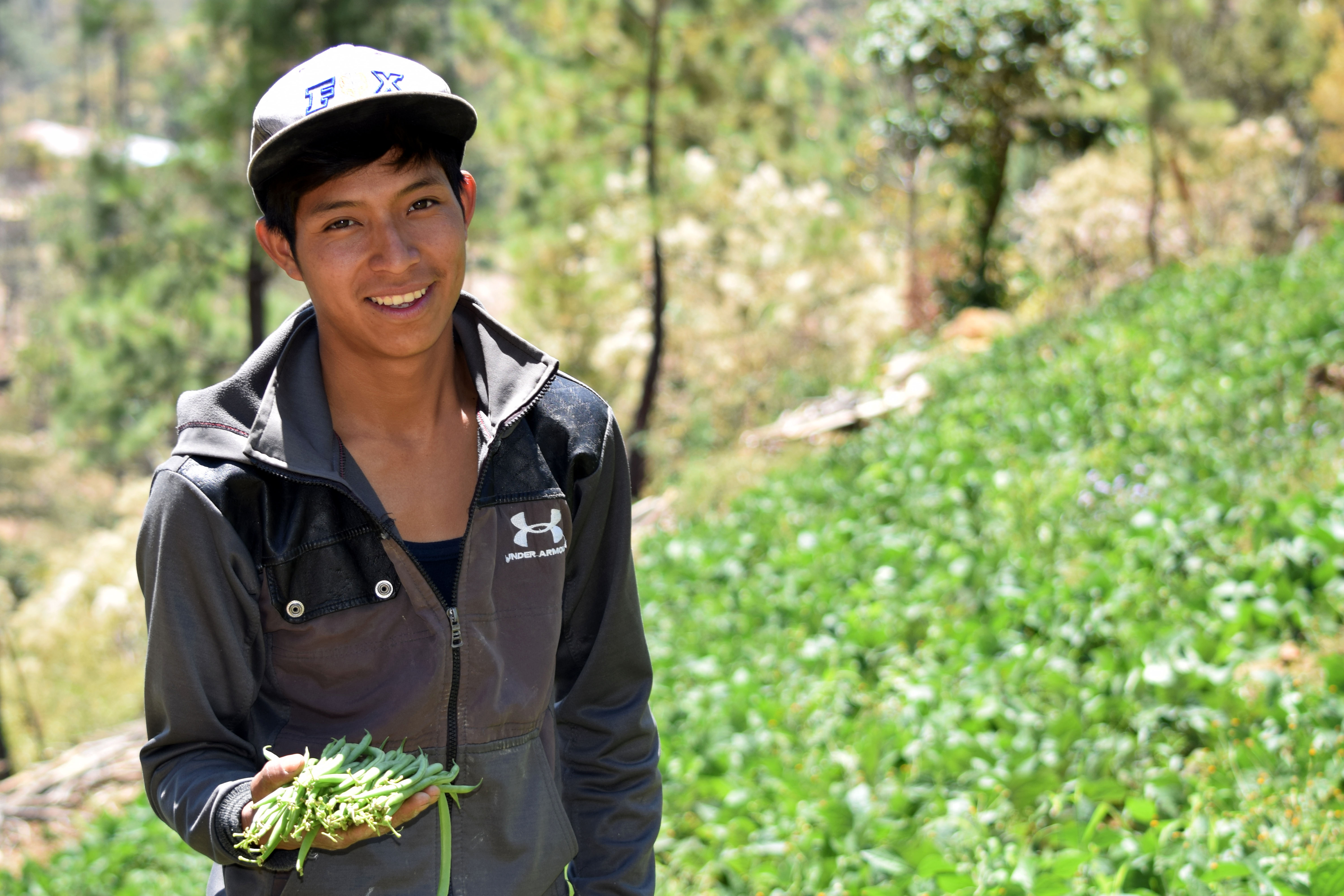 Young farmer holding green beans in sloped farming field
