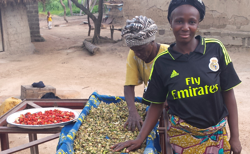 Woman farmers with tray of dried okra