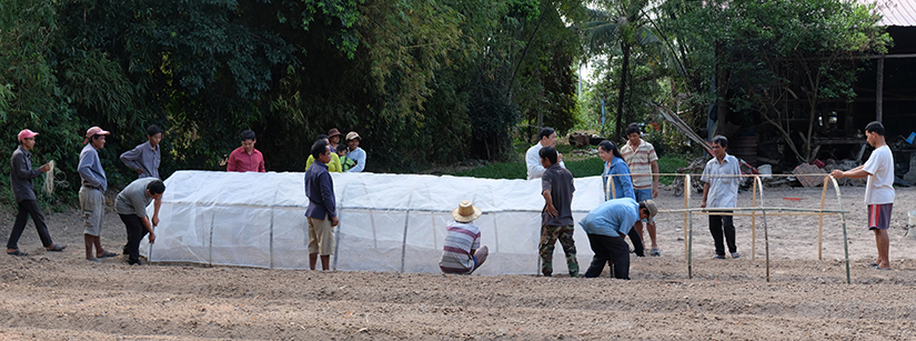 Farmer group sets up net tunnel in Cambodia