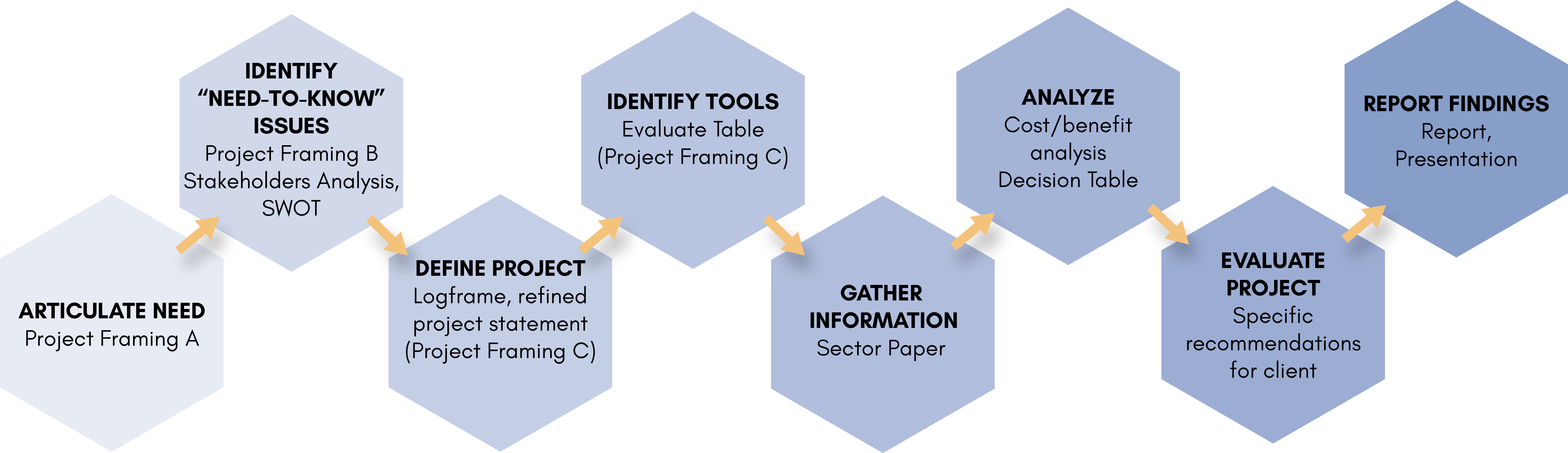 Diagram illustrating the organization of the feasibility studies deliverables