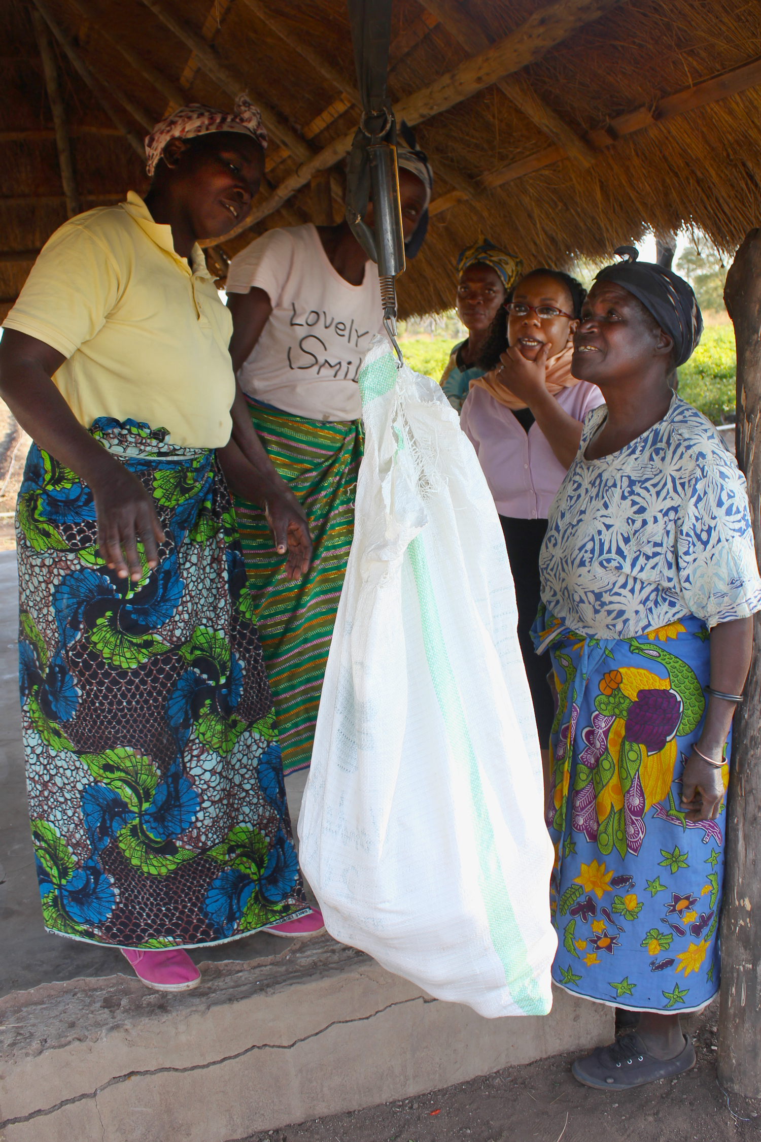 Women farmers and a buyer gather around a scale and bag of produce to discuss prices.