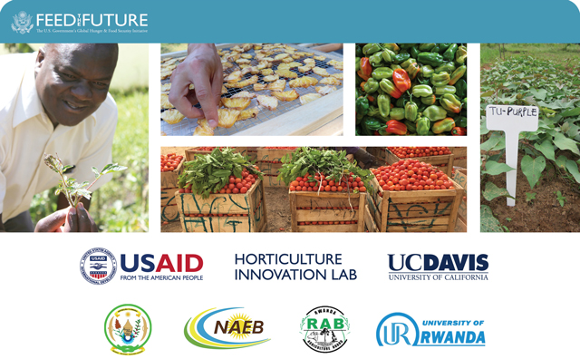 collage with Feed the Future, Horticulture Innovation Lab, and Rwanda partners logos