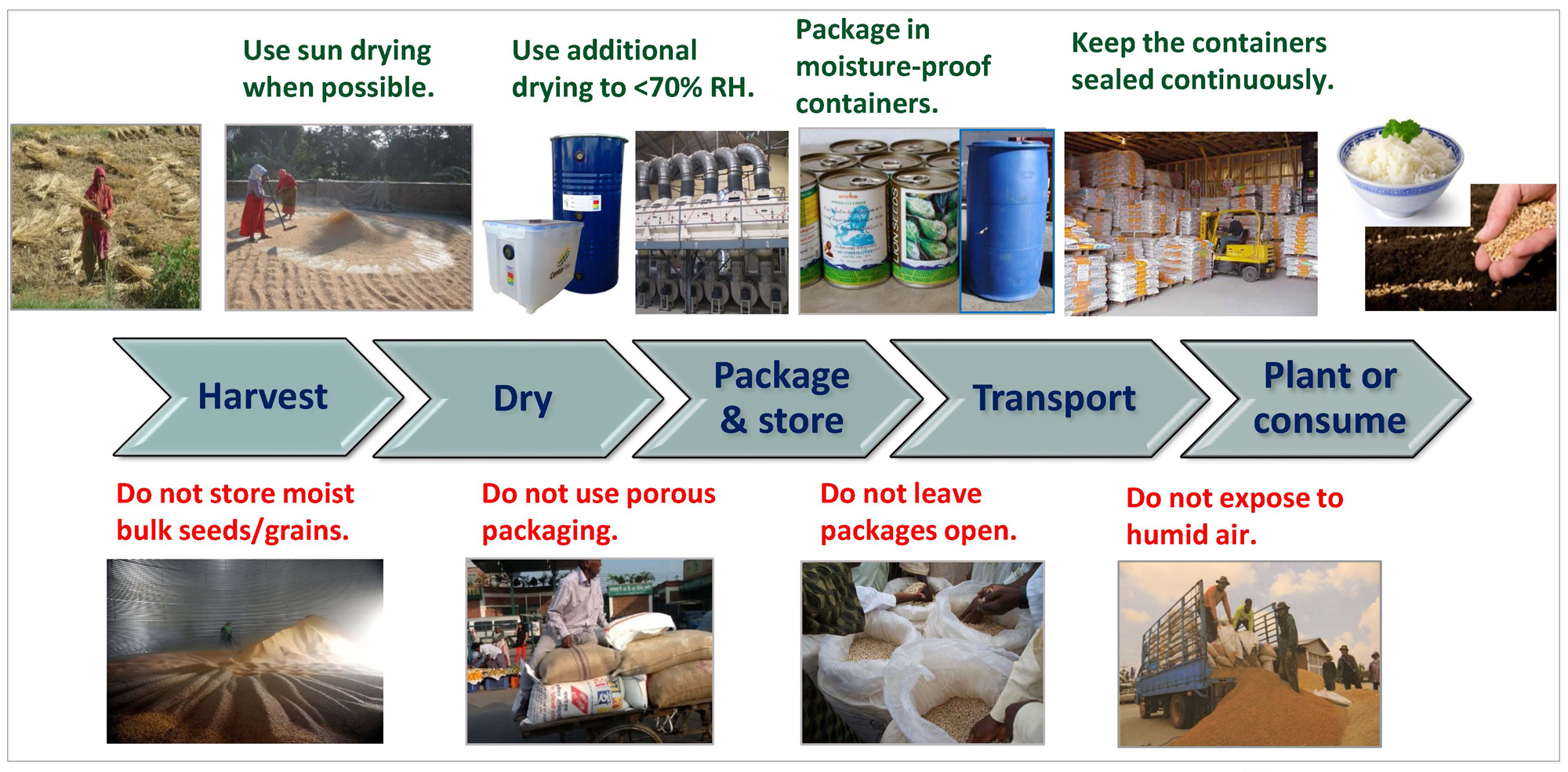 Dry Chain for Seed and Food Preservation slide - shows what to do and what not to do in dry chain, from harvest to consumer