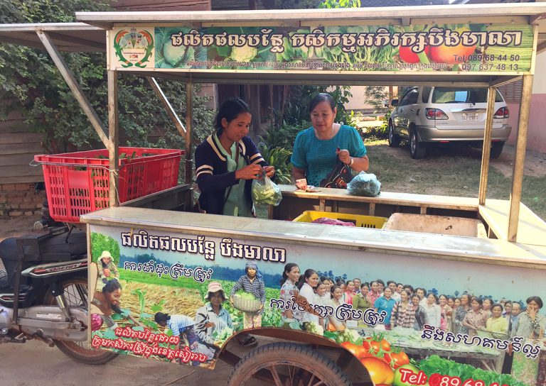 Painted trailer behind a motorbike, with women buying and selling vegetables from inside