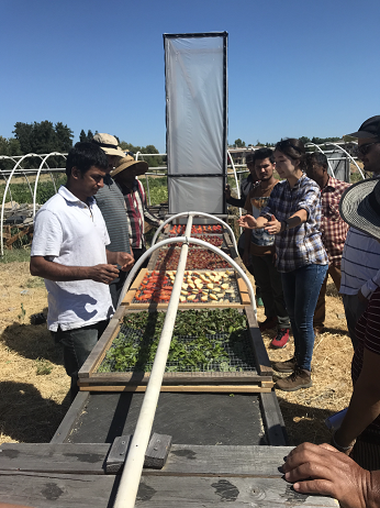 Student and farmers gather around chimney solar dryer at farm in Sacramento