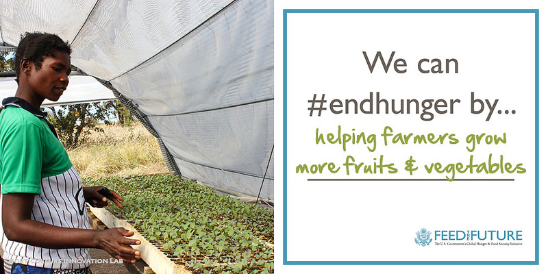 We can #endhunger by helping farmers grow more fruits & vegetables