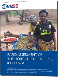 Guinea horticulture assessment - cover