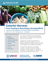 cover - fruits and vegetable image, Colorful Harvest: From Feeding to Nourishing a Growing World