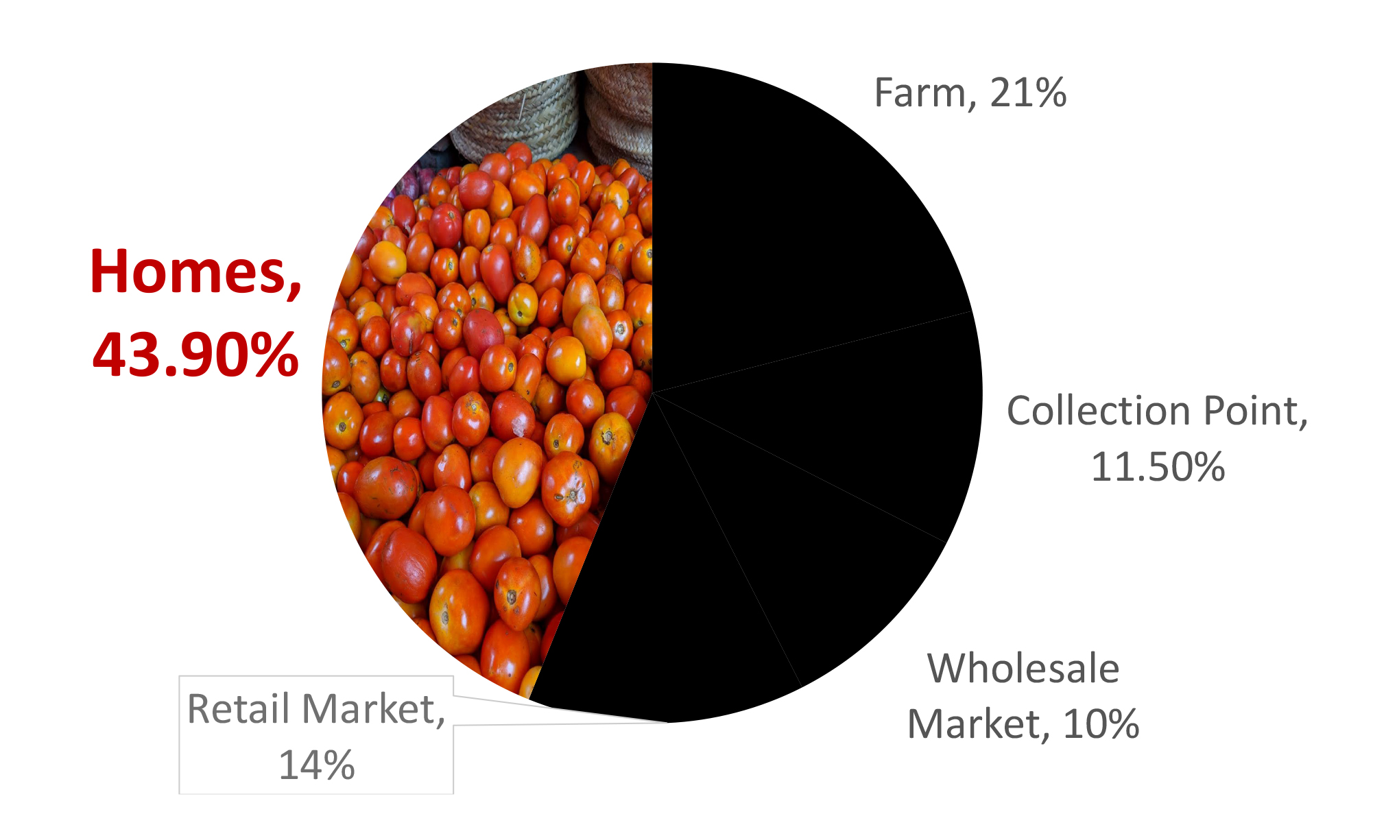 Pie chart showes that 43.9% of tomatoes harvested end up in homes, after 21% are lost on the farm, 11.5% lost at collection points, 10% lost at the wholesale market, and 14% are lost at retail.