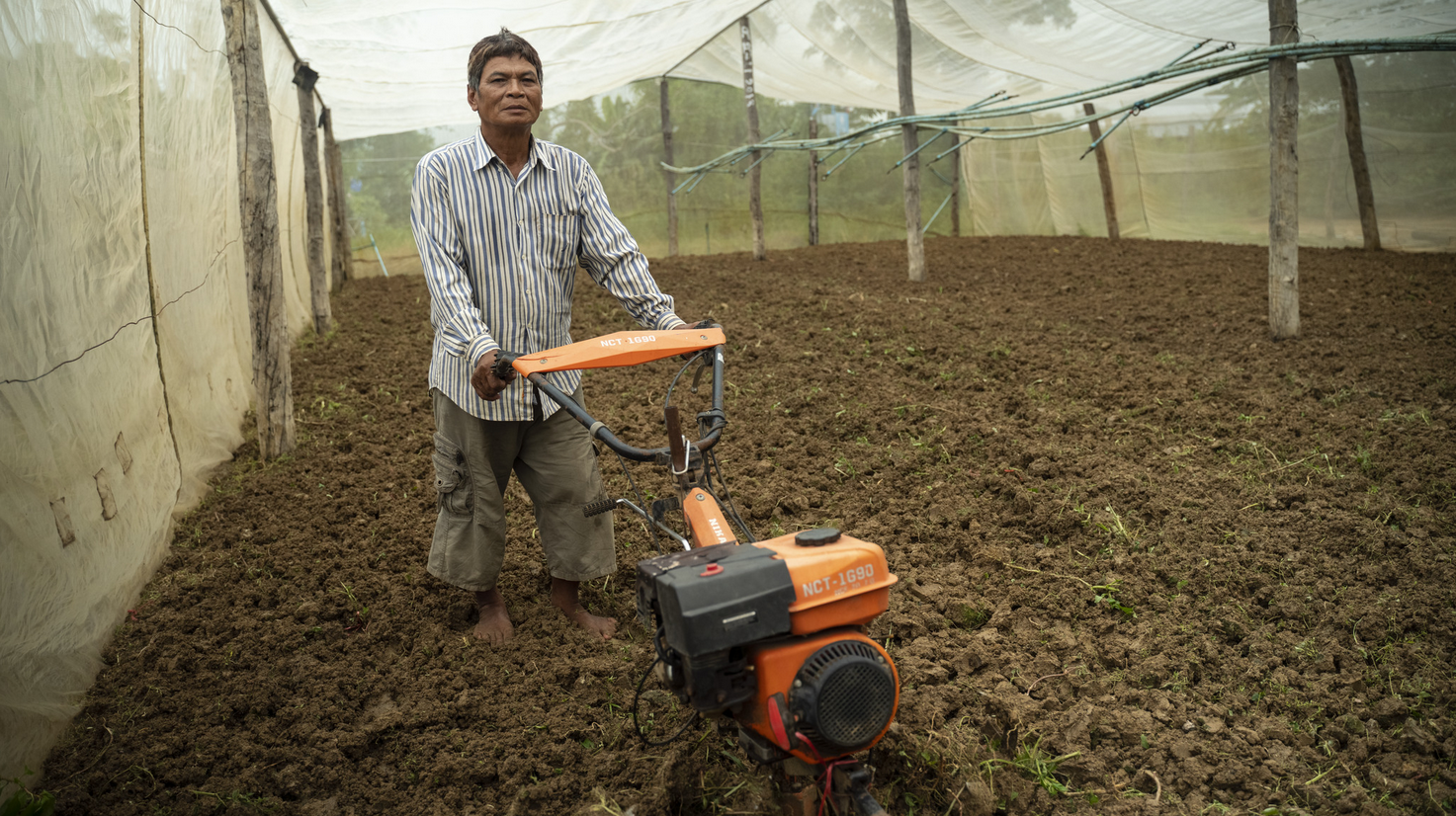 Farmer using a rototill on soil inside nethouse in Cambodia