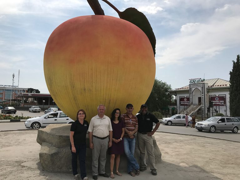 Researchers stands in front of giant apricot statue in a traffic circle in Isfara.