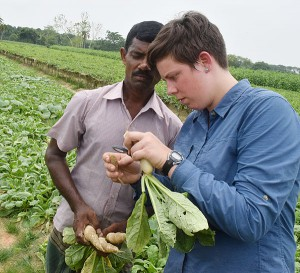 Graduate student and farmer examine a plant sample in a field