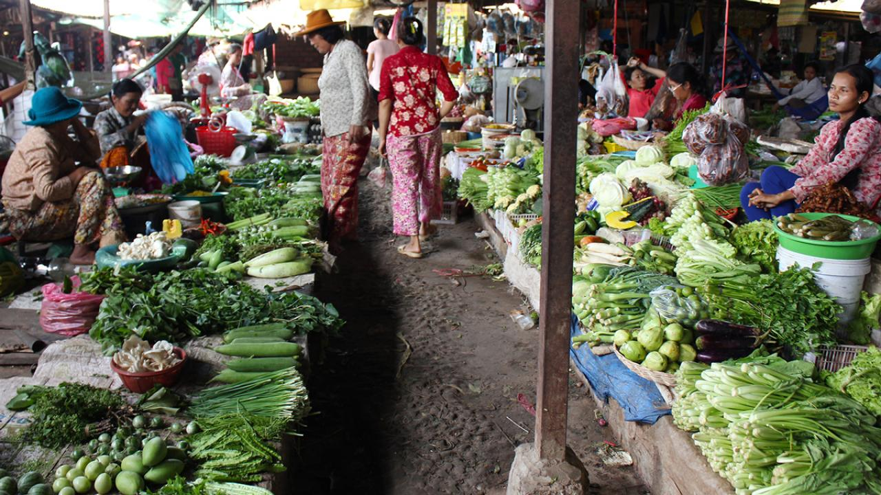 Women buying and selling vegetables in Cambodian market, with piles of squash, lettuces, bok choys, mushrooms, herbs, onions, cucumbers, peppers, eggplant and more on display.