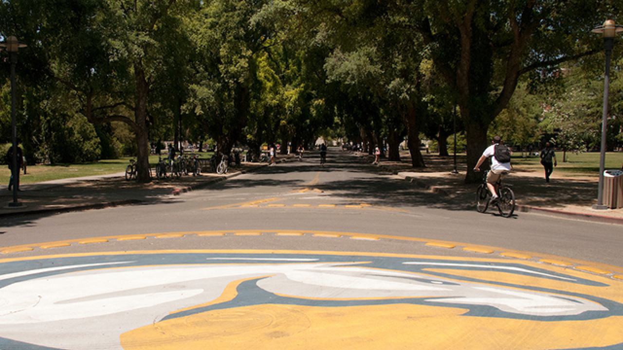Visit us at UC Davis | Feed the Future Innovation Lab for ... Uc Davis Campus Tour