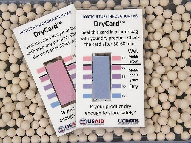 DryCards turn blue or pink to indicate whether food is dry enough to store safely and not grow mold