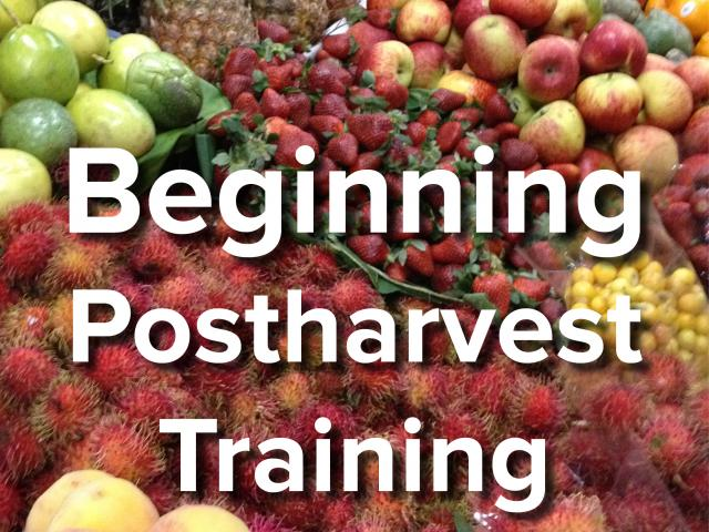 Beginning Postharvest Training text over background image of fresh tropical fruits at market