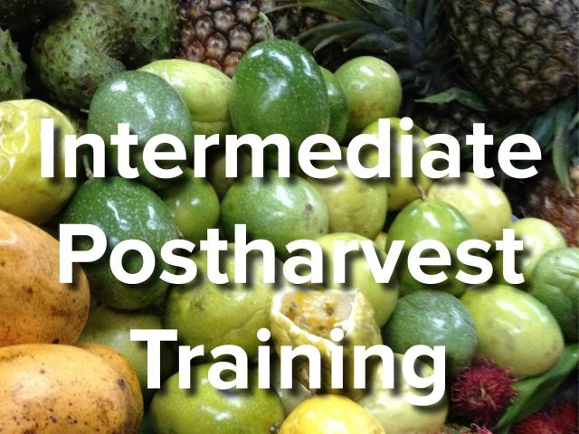 Intermediate Postharvest Training text on background image of fruits