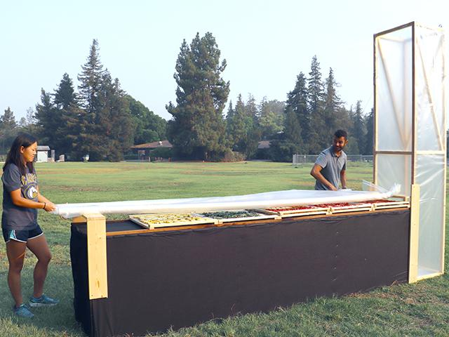 chimney solar dryer with student and researcher at UC Davis