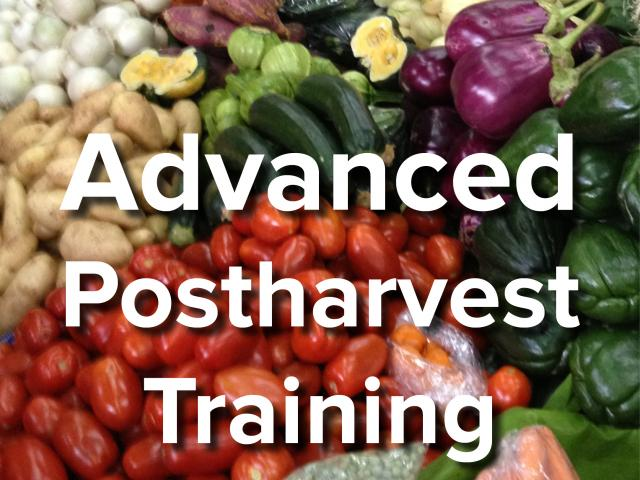 Advanced postharvest training text over background image of vegetables and fruits at market
