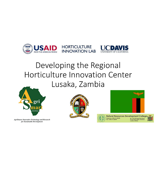 """Developing the Regional, Horticulture Innovation Center, Lusaka, Zambia"" title slide"