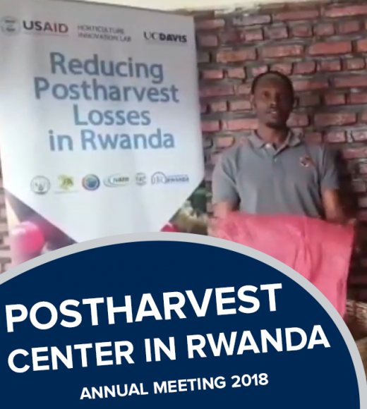 """Postharvest center in rwanda, 2018 annual meeting"" text in front of photo of man holding large produce bag standing next to produce crates"