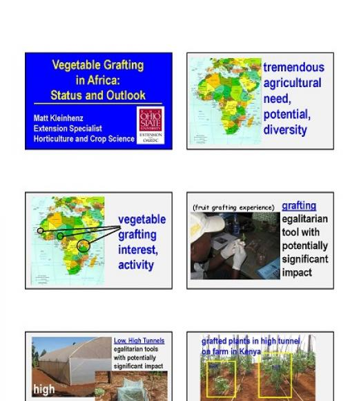"""Vegetable grafting in Africa: Status and Outlook, Matt Kleinhenz, Extension Specialist, Horticulture and Crop Science"" slides"