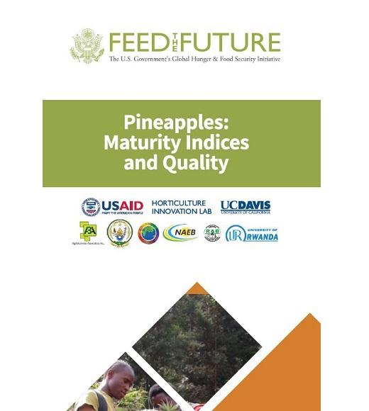 Pineapples: maturity indices and quality