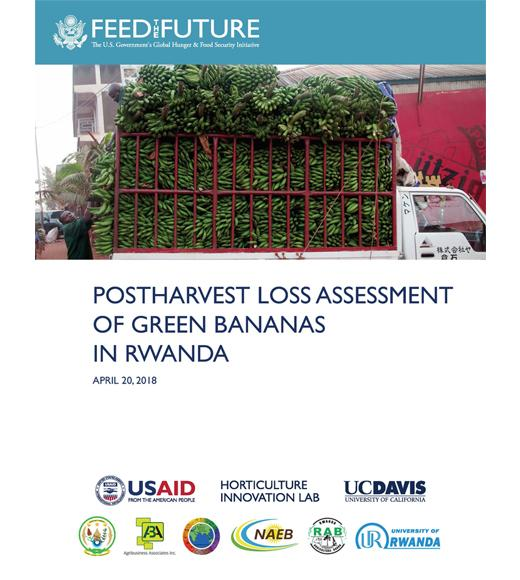 """Postharvest Loss Assessment of Green Bananas in Rwanda"" title page, with photo of green bananas loaded for transport"