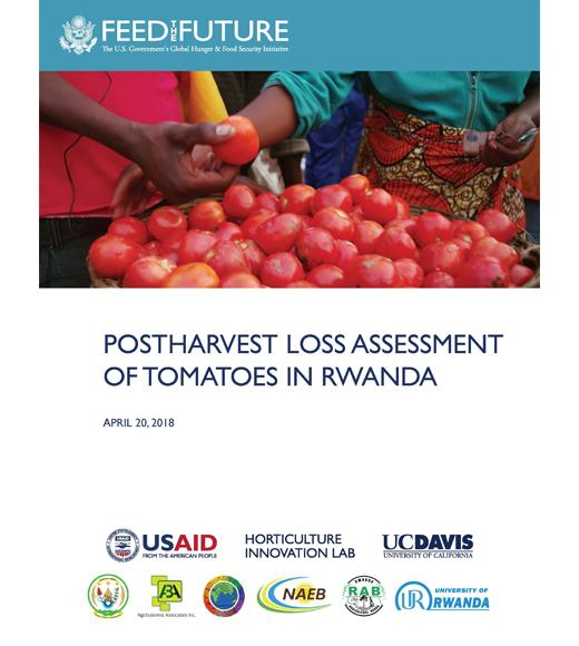 """Postharvest Loss Assessment of tomatoes in Rwanda"" title page, with photo of a basket of tomatoes"