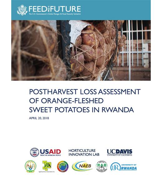 """Postharvest Loss Assessment of Orange-Fleshed Sweet Potatoes in Rwanda"" title page with image of"