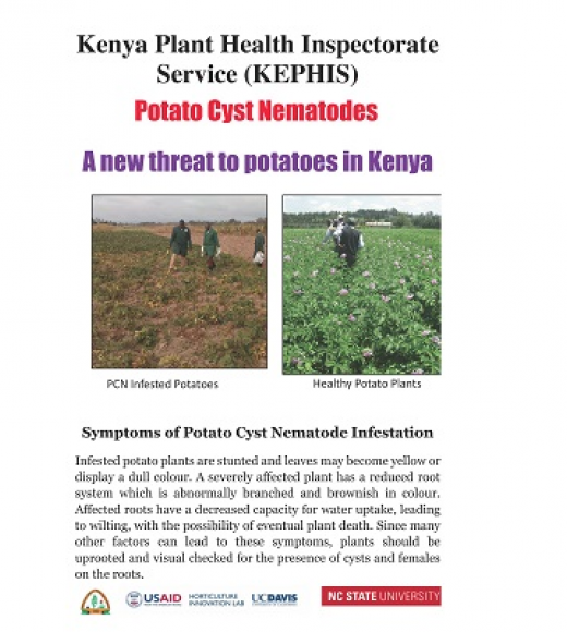 Brochure cover of potato cyst nematodes: a new threat to potatoes in Kenya