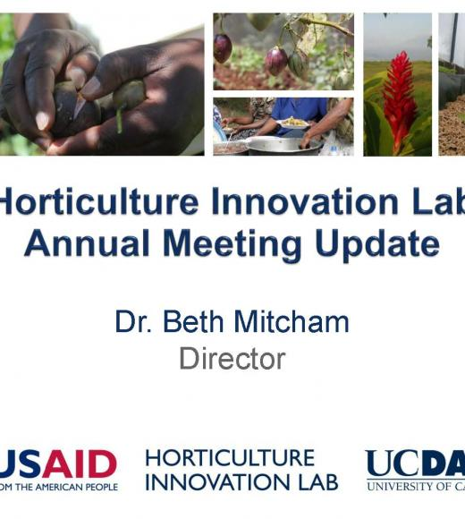 Horticulture Innovation Lab annual meeting update - title slide