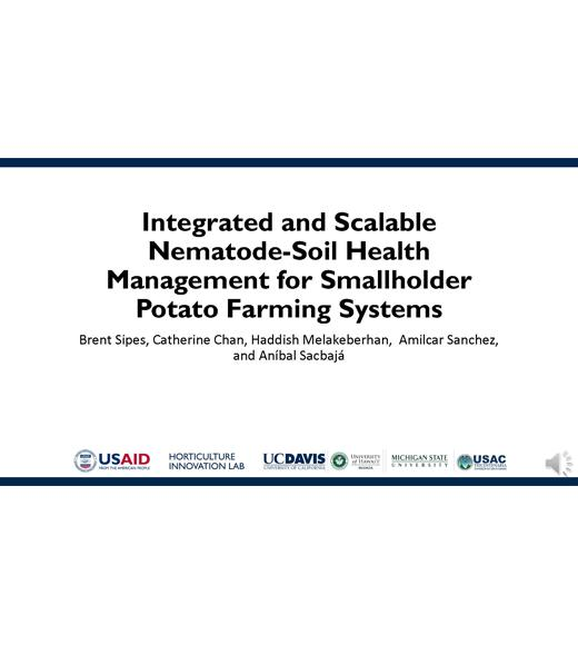 """Integrated and scalable nematode soil health management for smallholder potato farming systems, Brent Sipes, Catherine Chan, HaddishMelakeberhan, AmilcarSanchez, and AníbalSacbajá"" title slide"