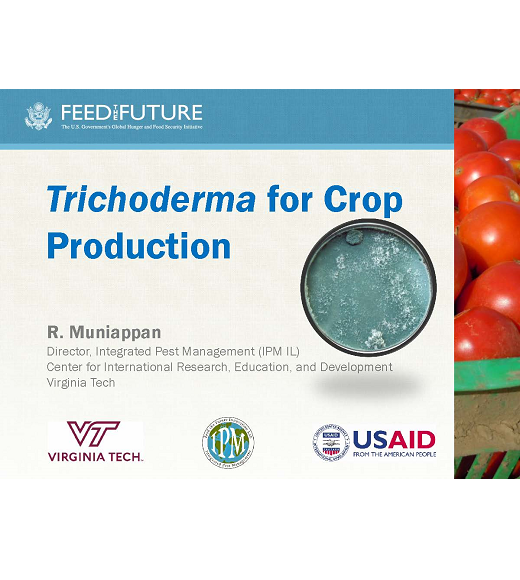 Cover image of title slide Trichoderma for soil health