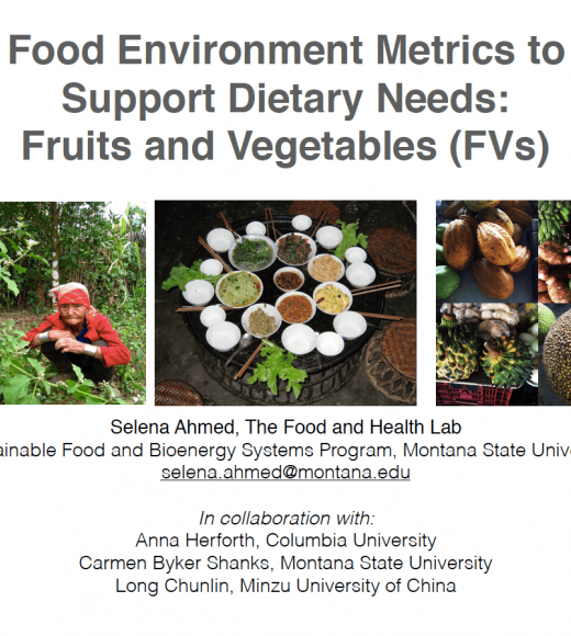Food environment metrics to support dietary needs: fruits and vegetables (FVs) - title slide