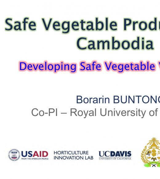 title slide- Safe Vegetable Production in Cambodia, Developing Safe Vegetable Value Chain