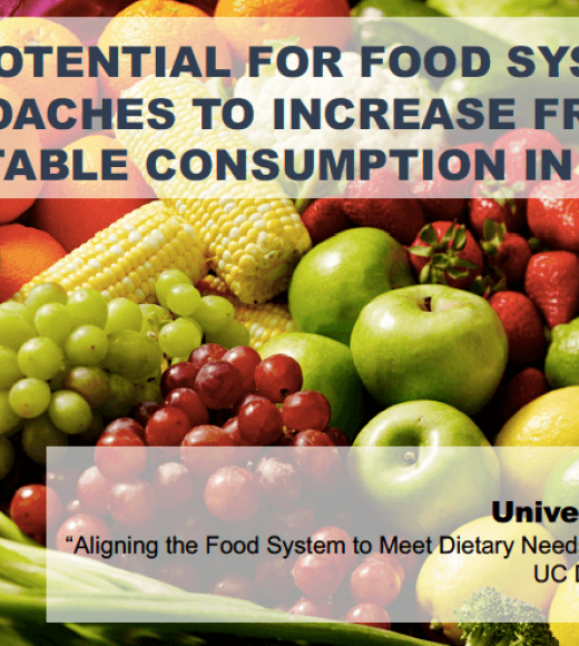 The potential for food systems approaches to increase fruit and vegetable consumption in low and middle-income countries - Title slide