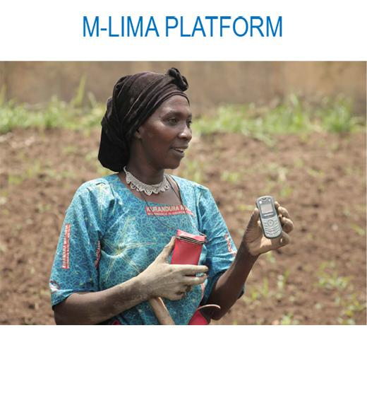M-LIMA Platform - photo of woman farmer with mobile phone in field