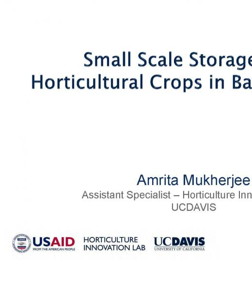 """Small Scale Storage of Horticultural Crops in Bangladesh, Amrita Mukherjee"" title slide"