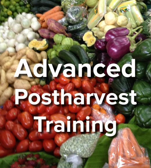 Advanced Postharvest Training - words on background image of fresh vegetables and fruits in market