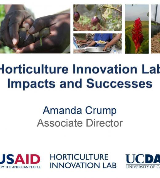 Horticulture Innovation Lab successes and impacts - title slide