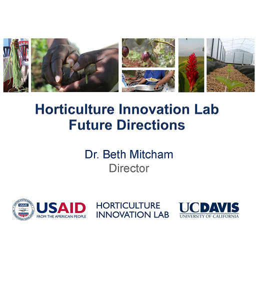 Horticulture Innovation Lab future directions - title slide