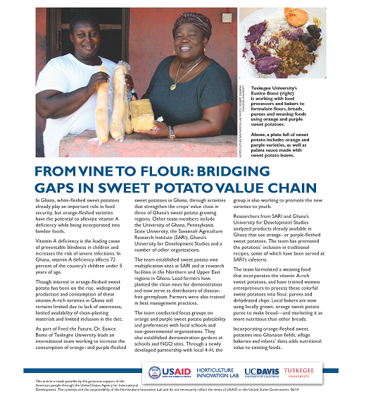 From vine to flour: Bridging gaps in sweet potato value chain