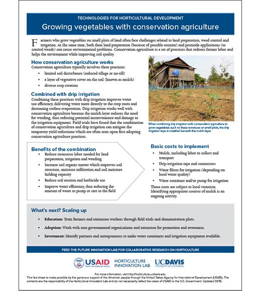 Technology fact sheet: Conservation agriculture for vegetables