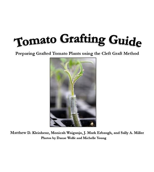 "grafted tomato seedling photo with ""Tomato Grafting Guide, Preparing Grafted Tomato using the Cleft Graft Method"" cover page"