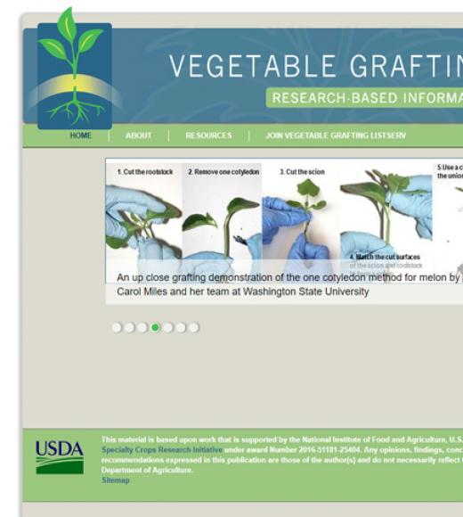 Vegetable grafting research-based information portal website image