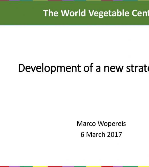 """The World Vegetable Center, Development of a new strategic plan"""