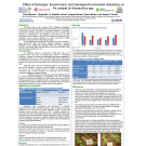 Academic poster on iron content in Amaranth plant varieties, tested in Tanzania and New Jersey